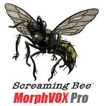 скачать русификатор для morphvox pro